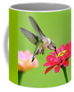 Waiting In The Wings Hummingbird Square Coffee Mug