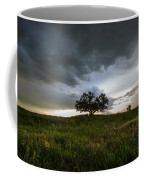 Wakinyan Coffee Mug