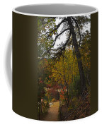 Walden Pond Path Into The Forest 2 Coffee Mug
