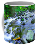 Walk Bridge Over Moffit Creek Coffee Mug