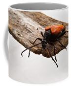 Walking Beetle Coffee Mug