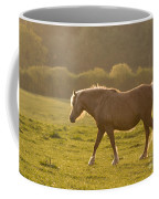 Walking In The Sun Coffee Mug
