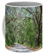 Walking In The Woods Of Amelia Island Coffee Mug