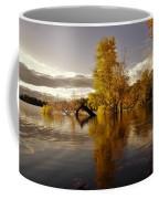 Wall Approved Coffee Mug
