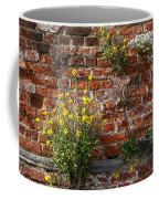Wall Flowers Coffee Mug