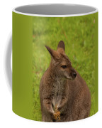 Wallaby Coffee Mug