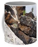 Walnut Canyon Cliffs Coffee Mug