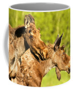 Wandering In The Forest Coffee Mug