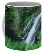 Warner Falls Coffee Mug by Michael Peychich
