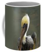 Wary Brown Pelican Coffee Mug