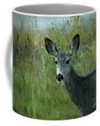 Wary Doe Coffee Mug