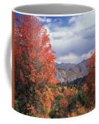 212m45-wasatch Mountains In Autumn  Coffee Mug