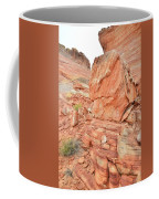 Wash 3 Of Valley Of Fire Coffee Mug
