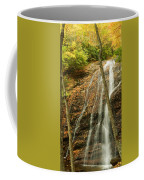 Wash Hollow Falls Nantahala National Forest Nc Coffee Mug