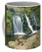 Washington Falls 3 Coffee Mug