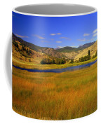 Washington Landscape Coffee Mug