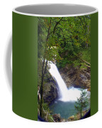 Washngton Falls1 Coffee Mug