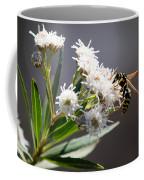 Wasp Closeup Coffee Mug