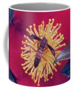 Wasp On Indian Hawthorn Coffee Mug