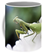 Watch Me Prey Coffee Mug