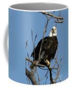 Watch On The Fox Coffee Mug