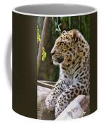 Watching A Shadow Coffee Mug