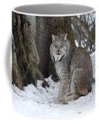 Watching Me Watch You Coffee Mug