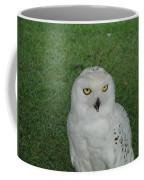 Watching Owl Coffee Mug