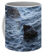 Water And A Rock Coffee Mug
