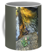 Water And Rock Coffee Mug