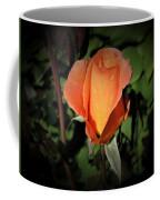 Water Beads On Orange Rose Coffee Mug