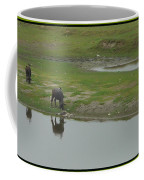 Water Buffaloe Coffee Mug