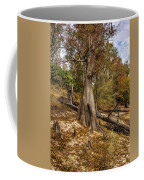 Water Cypress Coffee Mug