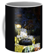 Water Dancer 4  Coffee Mug