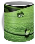 Water Droplet On A Leaf Coffee Mug