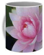 Water Drops On Water Lily Coffee Mug