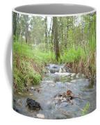 Water Flows After A May Rain Coffee Mug