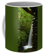 Water From The Flume Coffee Mug