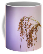 Drooping Teddy Bear Grass Coffee Mug