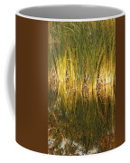 Water Grass In Sunset Coffee Mug