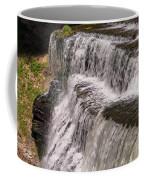 Water Levels Coffee Mug