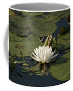 Water Lilies And Pads Coffee Mug