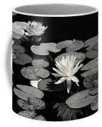 Water Lilies In Black And White Coffee Mug