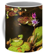 Water Lillies At Central Park Coffee Mug