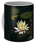 Water Lilly  Coffee Mug by Saija  Lehtonen