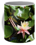 Water Lilly With Dragonfly Coffee Mug