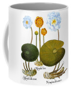 Water Lily, 1613 Coffee Mug