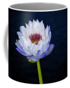 Water Lily #3 Coffee Mug