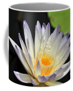 water lily 48 Green Smoke Coffee Mug