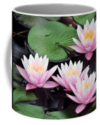 water lily 91 Sunny Pink Water Lily Coffee Mug